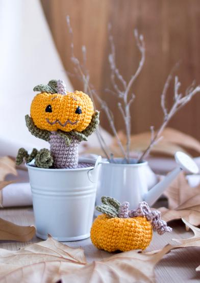 ANC0003-89_Baby pumpkin_A4.jpg